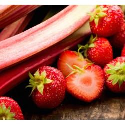 Strawberry & Rhubarb 50ml